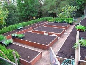 Купить товары для сада